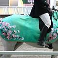 写真: 川崎競馬の誘導馬04月開催 桜Verその1-120409-15-large