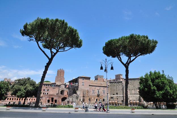 イタリア ローマの街並みと笠松