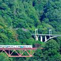 Photos: 中央線四方津の大呼戸橋梁を渡るE257系あずさ号