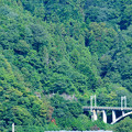 Photos: 大呼戸橋梁を渡る211系普通電車