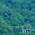 Photos: 大呼戸橋梁を颯爽と行くE351系中央線スーパーあずさ号