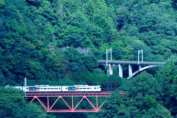 中央線四方津の大呼戸橋梁を渡る185系特急はまかいじ号