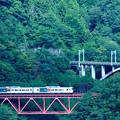 Photos: 中央線四方津の大呼戸橋梁を渡る185系特急はまかいじ号
