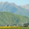 爺ヶ岳と鹿島槍ヶ岳を背景に安曇沓掛駅~信濃常盤を行く211系電車