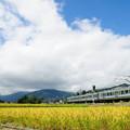 錦秋の大糸線を走る211系電車