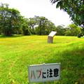 つめきり公園