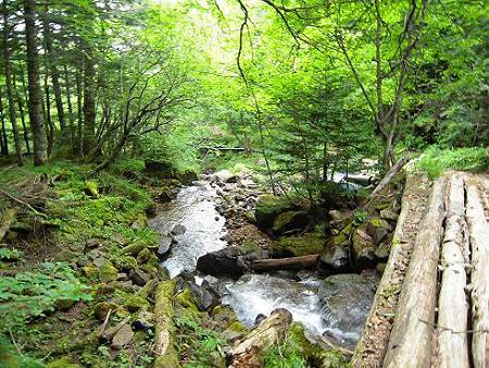 オーレン小屋へ向かう林道