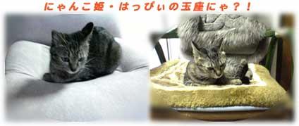2005/5/6-2 にゃんこ姫にゃ!?