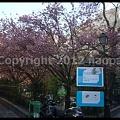 Photos: P3050481