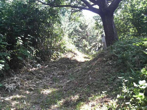 Photos: 末森城本丸正門跡。郭の規模と比して極端に狭い。食い違い虎口になっ...