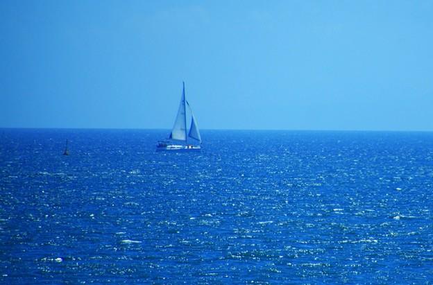 静かな青い海