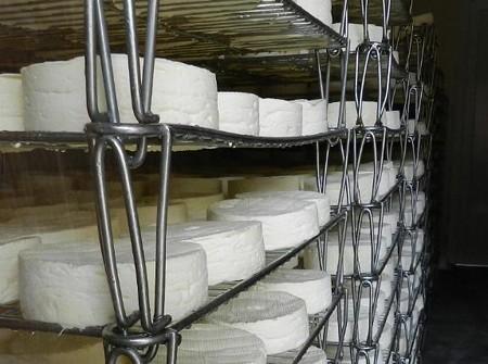 カマンベール・ド・ノルマンディー(札幌チーズマーケット)