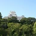 早朝の姫路城?