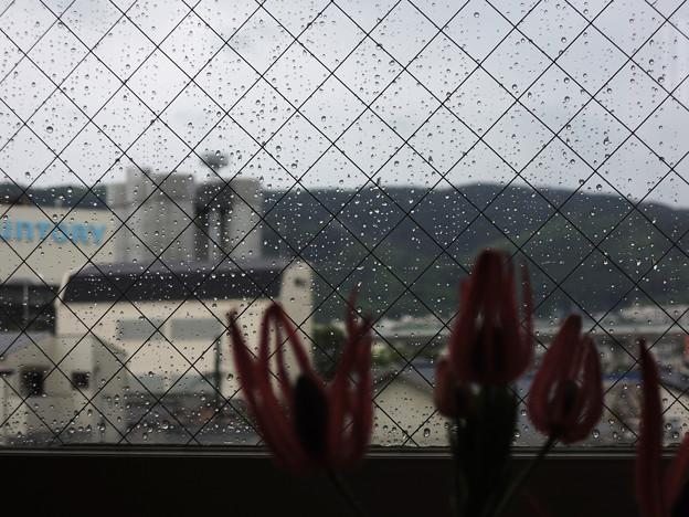 写真: 窓の外は雨