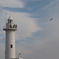 写真: 大王崎灯台