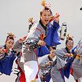 帯屋町筋 - 原宿表参道元氣祭 スーパーよさこい 2011