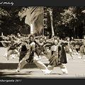写真: 所沢風炎祇神伝~雅~_19 - よさこい祭りin光が丘公園2011