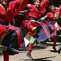 写真: 早稲田大学 踊り侍_15 - よさこい祭りin光が丘公園2011