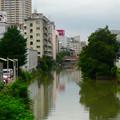 写真: 台風11号の雨で増水していた堀川 - 2
