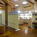 写真: 名古屋城天守閣:名古屋城の自然・昆虫展 - 1