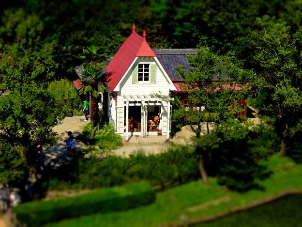 愛・地球博記念公園:「サツキとメイの家」 No - 30(展望塔から見下ろした建物、ミニチュアライズ)