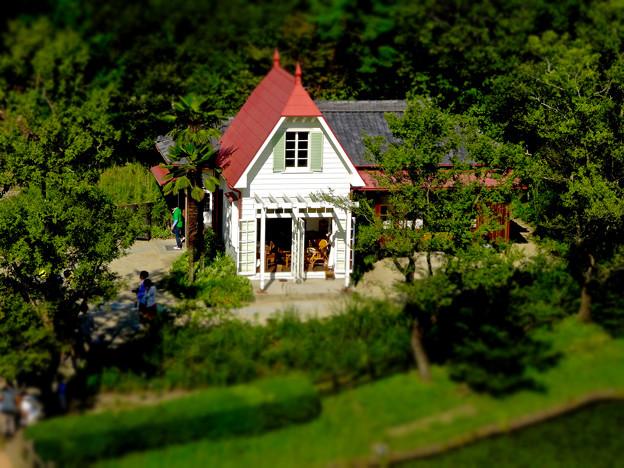 愛・地球博記念公園:「サツキとメイの家」 No - 31(展望塔から見下ろした建物、ミニチュアライズ)