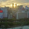 写真: 愛知芸術文化センターから見た、夕暮れ時の名駅ビル群 - 5