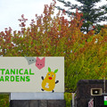 写真: 東山動植物園(2015年9月)No - 2:葉っぱが一部紅葉してた、正門前の木