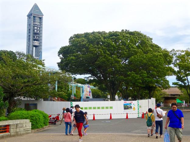 写真: 東山動植物園(2015年9月)No - 3:来春オープン予定の土産屋 兼カフェの工事現場