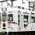 写真: たま電車1