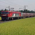 P8280011