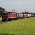 P8280014