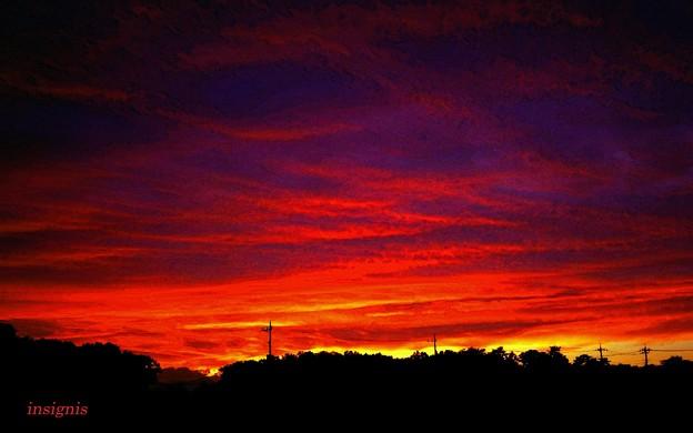 Photos: 空が燃えていた日.......