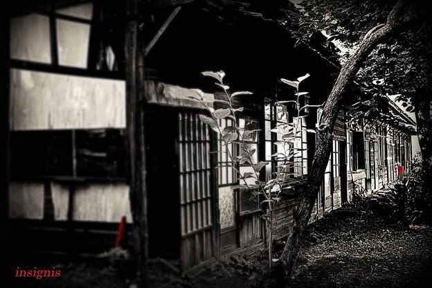 Photos: 旧陸軍桶川飛行学校 11