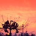 Sunset.......