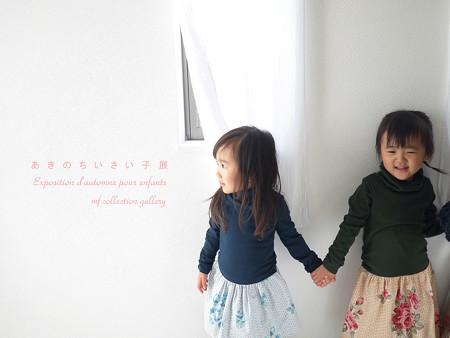 あきのちいさい子展2015 5