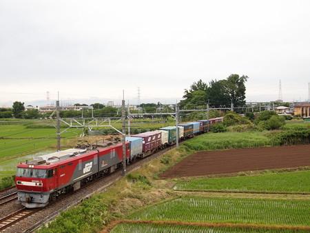EH500貨物 東北本線白岡~新白岡