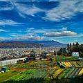 写真: 八ヶ岳遠景(SDIM0345)