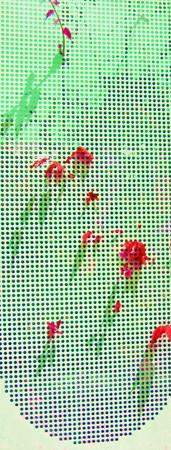 愛のかたち-05片恋