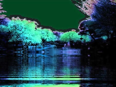 馬事公苑-桜-06b