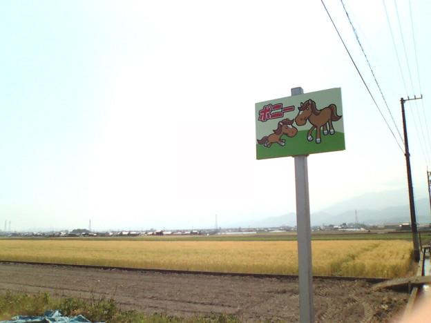 写真: 20120518101506