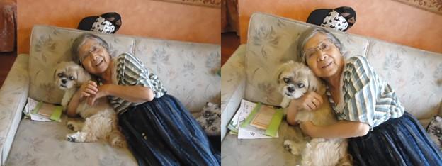写真: ワンパラにておばあちゃん