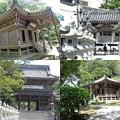 写真: 誕生寺2
