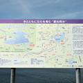 Photos: DSC_0529 東郷調整池(愛知池)その10