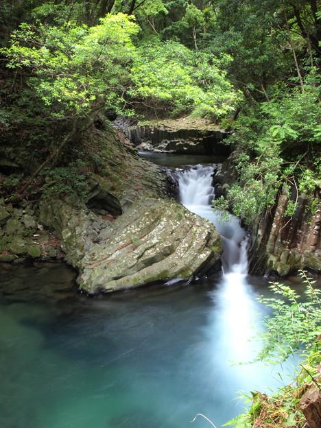 写真: P6201128