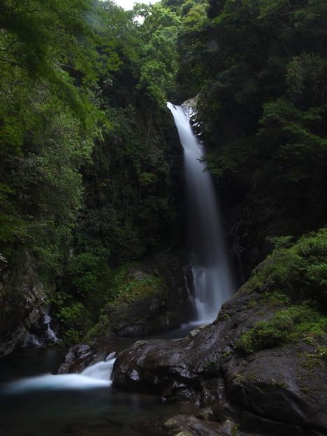 写真: P6201186