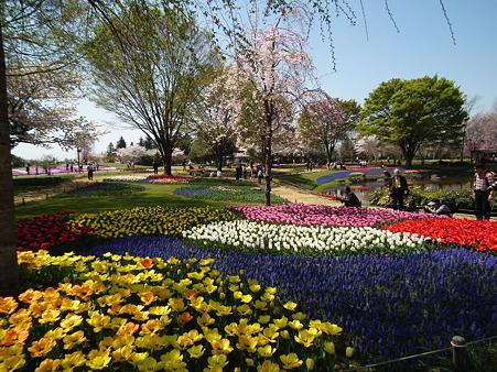 14昭和記念公園