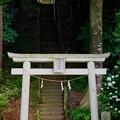 Photos: 大宮神社