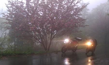 2012 5.2 雨天 兵庫県ツーリング