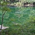 Photos: 龍ヶ窪の池 2